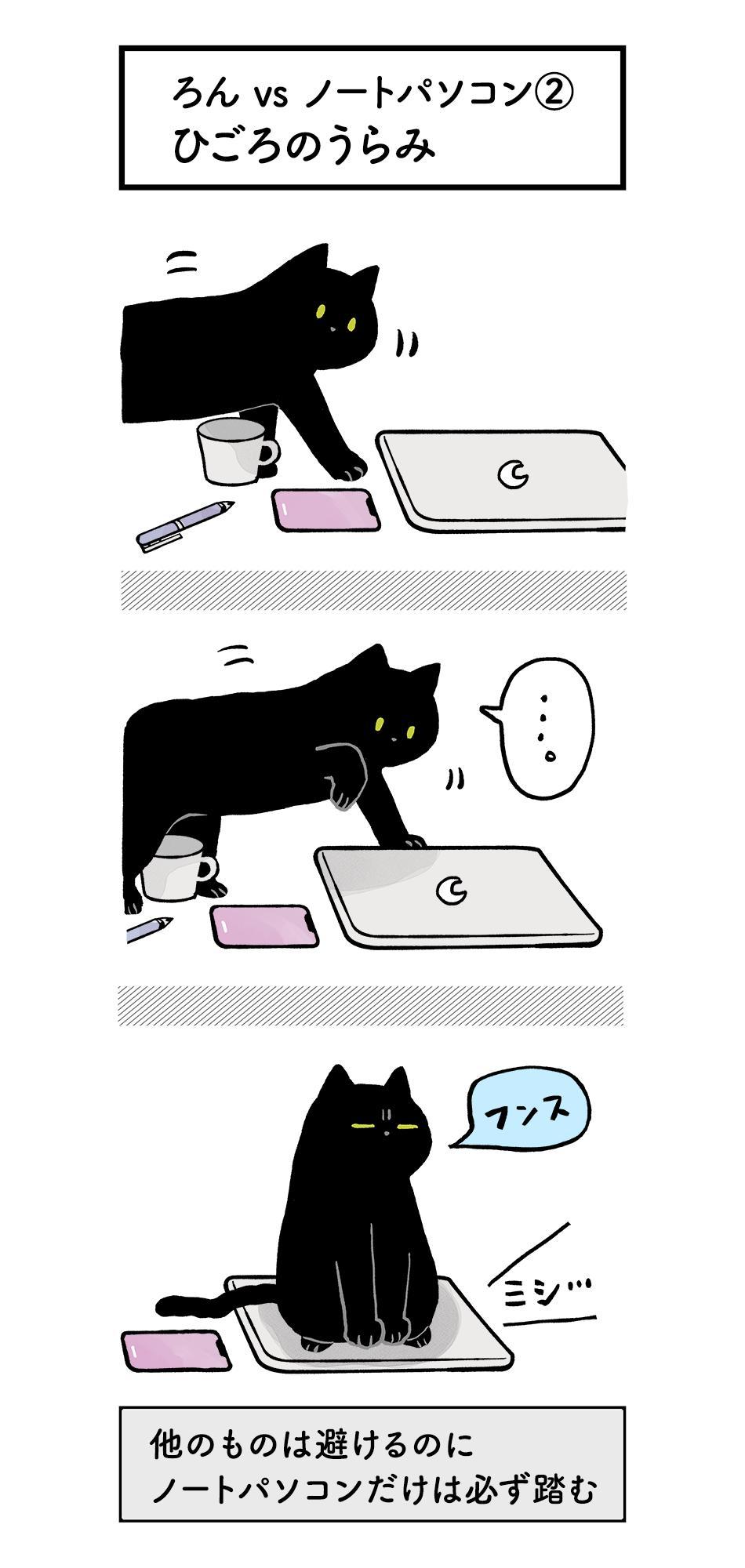 構って欲しい猫ちゃんがキュートすぎ!でもノートパソコンだけは踏まないでねwww