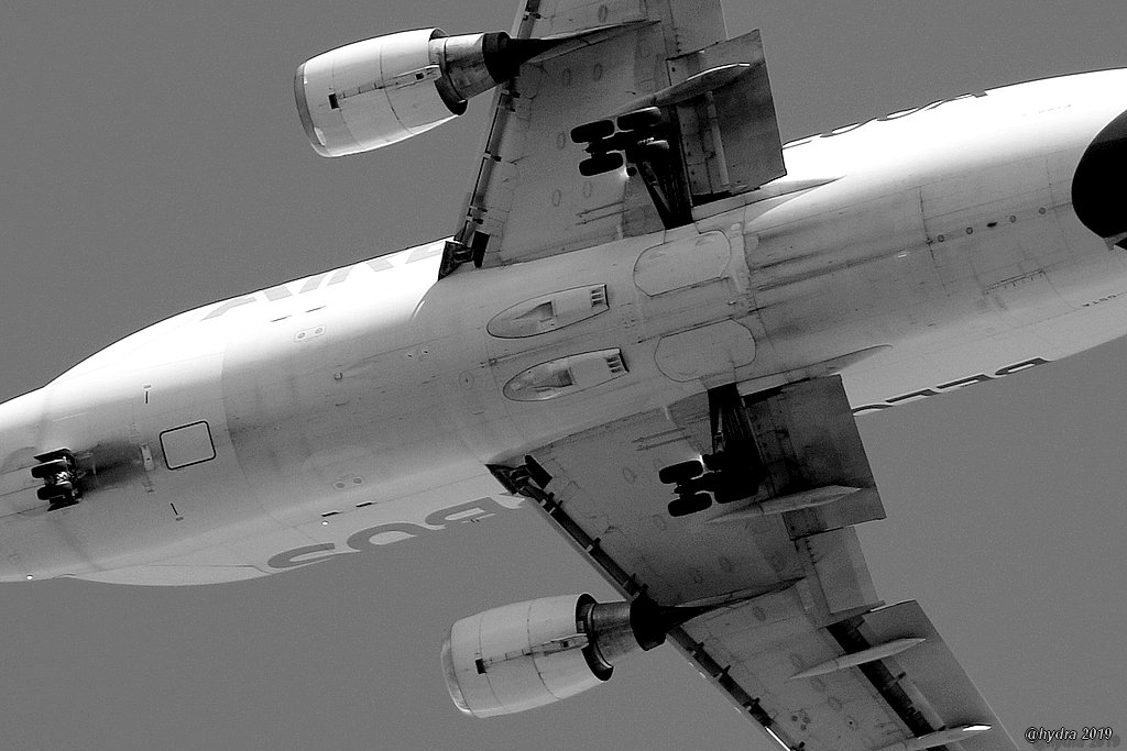 #Beluga n°1 #Perpignan #Airbus