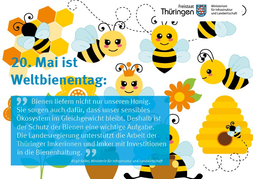 TMIL's photo on #Bienen