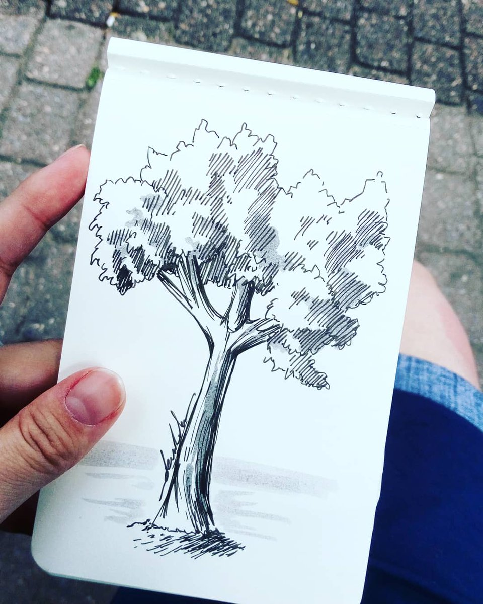 Quick doodle by the roadside #dailyart #dailyillustration #tree #quicksketch #quickdoodle https://t.co/bJ3oZ2gaE3