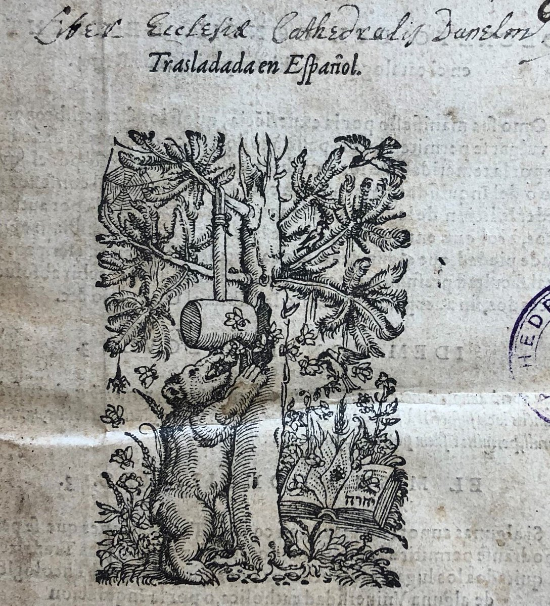 For #WorldBeeDay heres the printers device of the Apiarius family of Bern in a 1569 Spanish Bible. Apiarius translates as bee master, & the bear is the symbol of Bern. Read more about the Bear Bible here: durhamcathedral.co.uk/heritage/treas… #Reformation #earlymodern #rarebooks