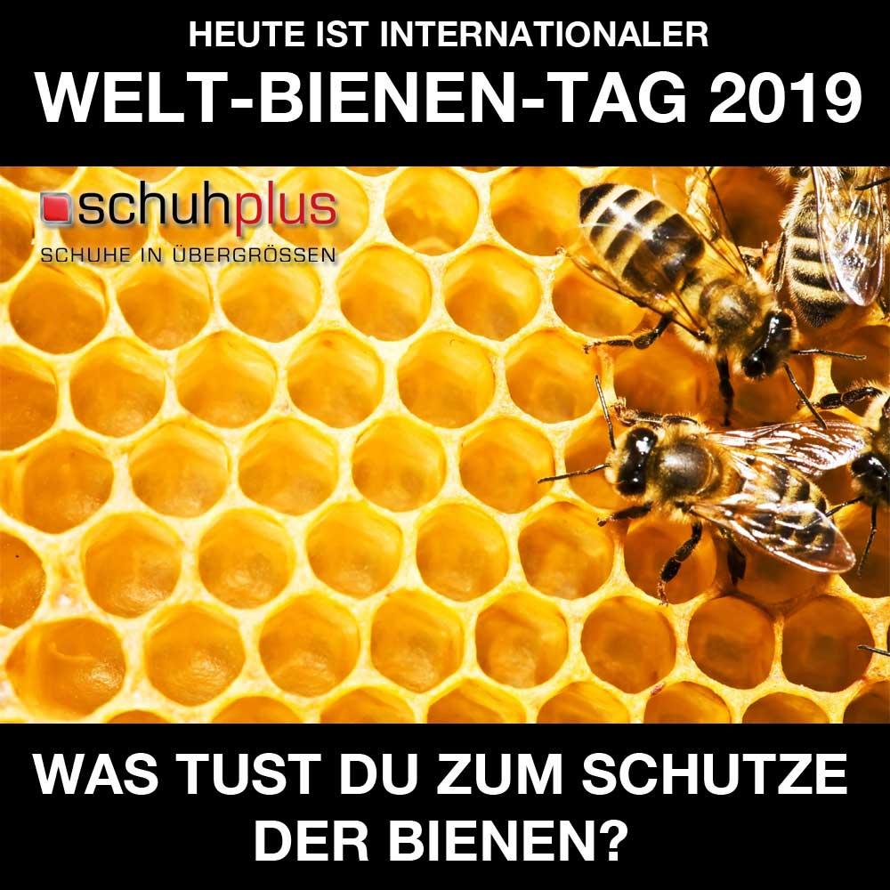 schuhplus Übergrößen's photo on #Bienen