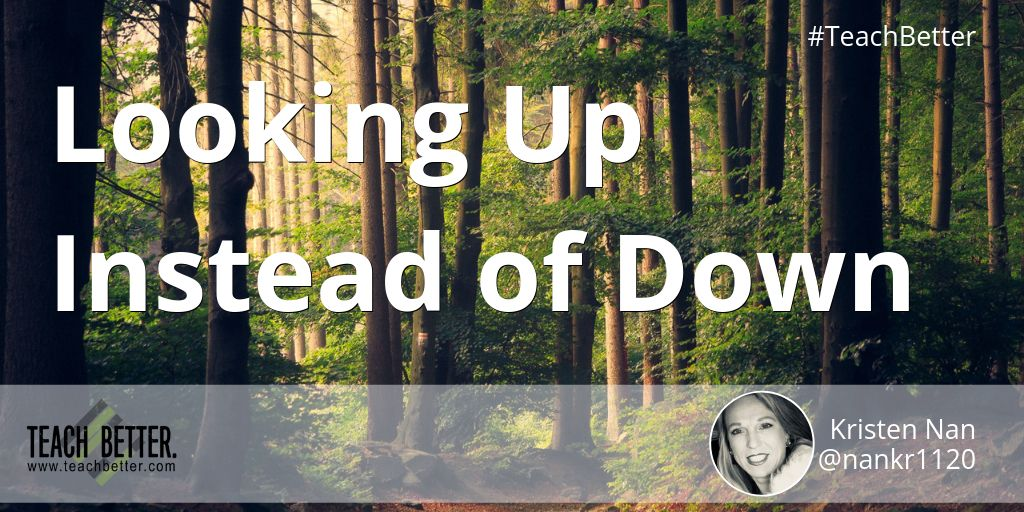 Awesome guest post by the rockstar, @nankr1120 - Looking Up Instead of Down buff.ly/2LKBd4d