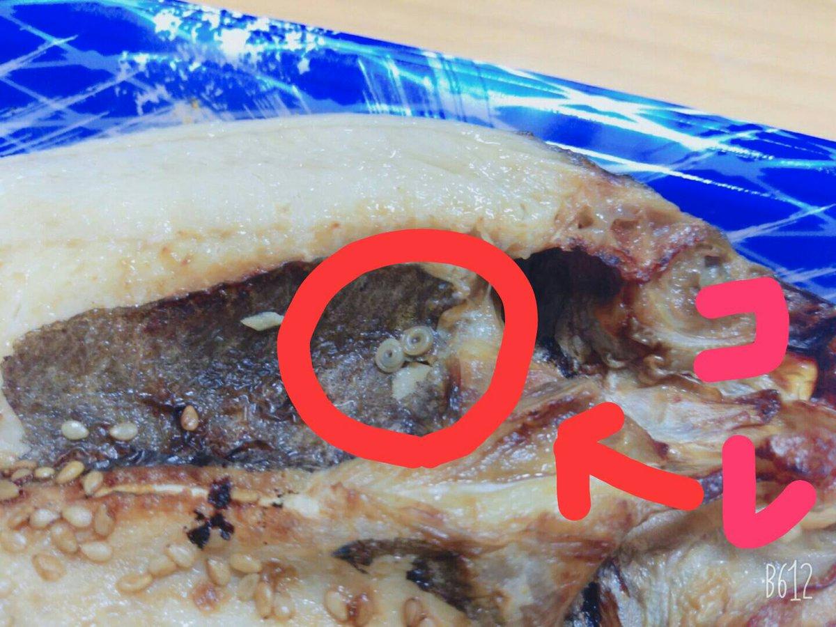 焼き魚 アニサキス アニサキス