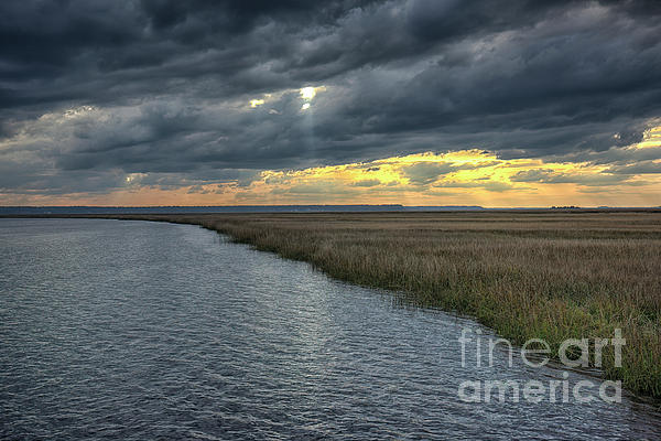 New artwork for sale! - &quot;Lowcountry Swamp At Sunset&quot; -  https:// fineartamerica.com/featured/lowco untry-swamp-at-sunset-felix-lai.html &nbsp; …  @fineartamerica<br>http://pic.twitter.com/C8HBoCowlc