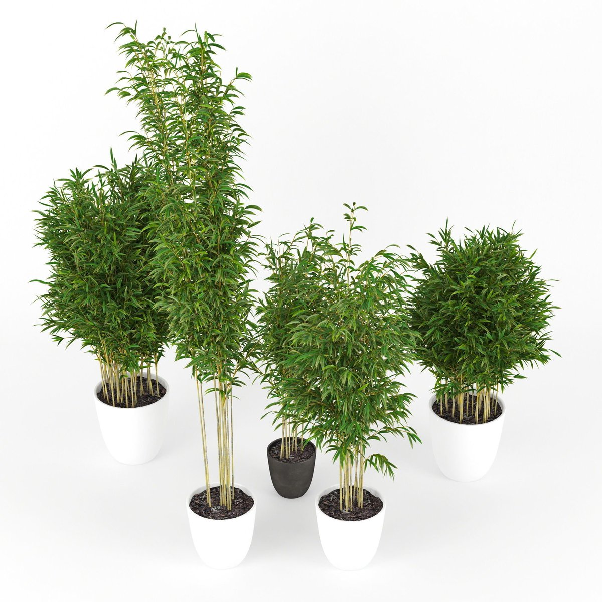 plant3d hashtag on Twitter