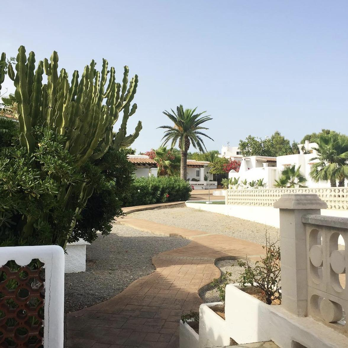 Beautiful spring days at Residencial Bogamarí 🌝http://ow.ly/QpmH50uj8qI  #hotel #holidayvillas #Ibiza