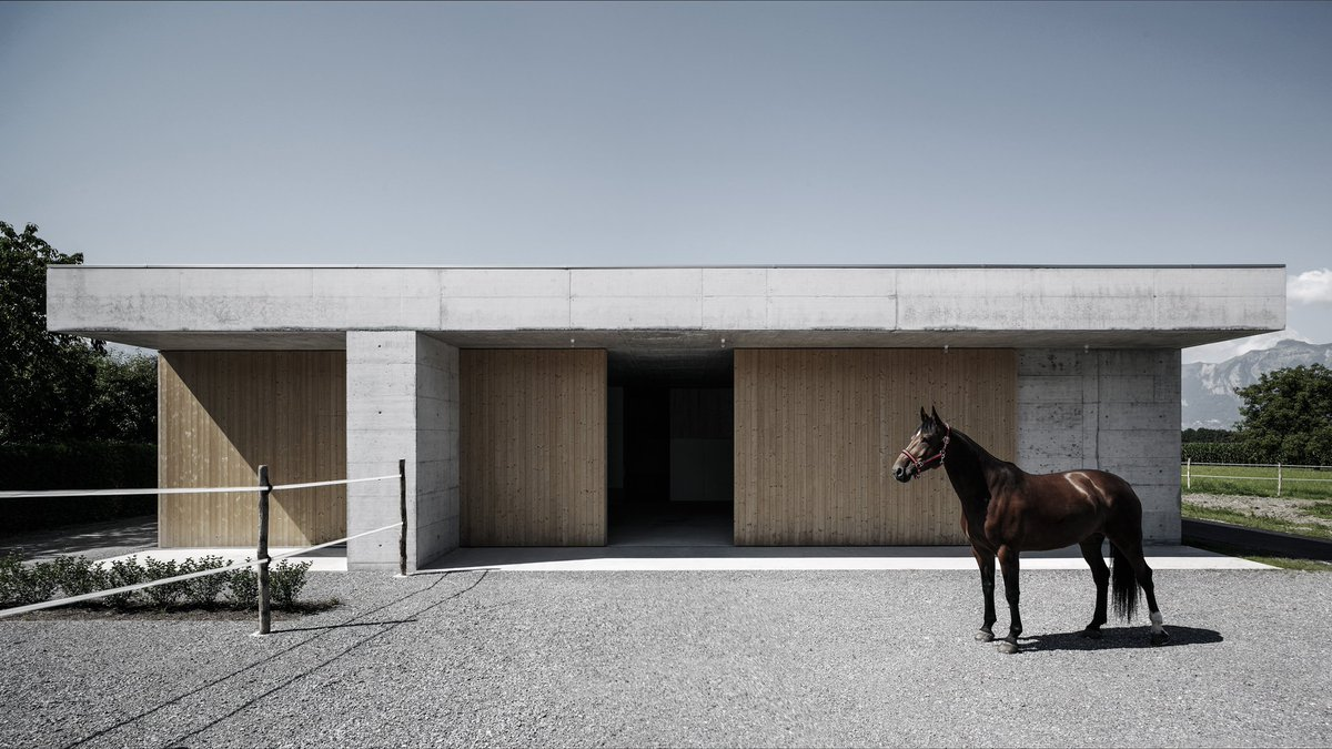 See the best photos of animals in architecture with a trip through our archive: at.dezeen.com/2EeT9xJ