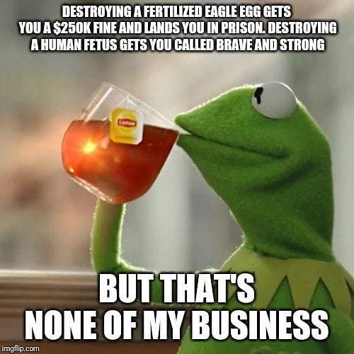 #trumplicans #trumptrain #donaldtrump #donaldtrumpmemes #maga #2ndamendment  #makeamericagreatagain #donaldjtrump #45thpresidentoftheunitedstates #lol #funny #lmao #memes #landofthefree #usa #yourtears #libtards #cnn #fakenews #memewar #cnnmemewar #fake … http://bit.ly/2LY4451
