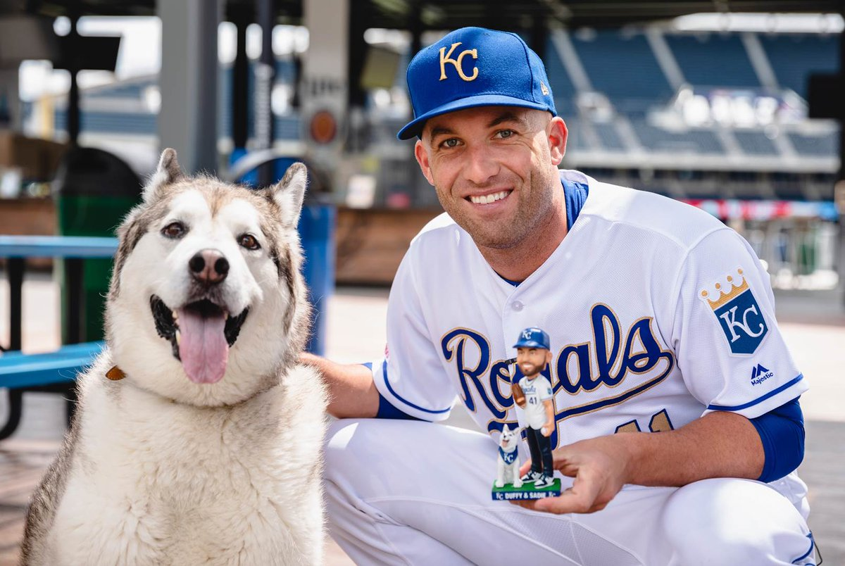 A first look at the bobblehead inspired by (Duff)man's best friend.Arriving to #TheK on July 13. #AlwaysRoyal