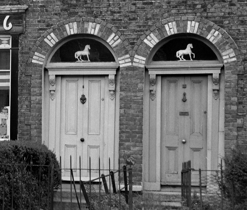 The white horse in thefanlight comeheretome.com/2019/05/20/the…