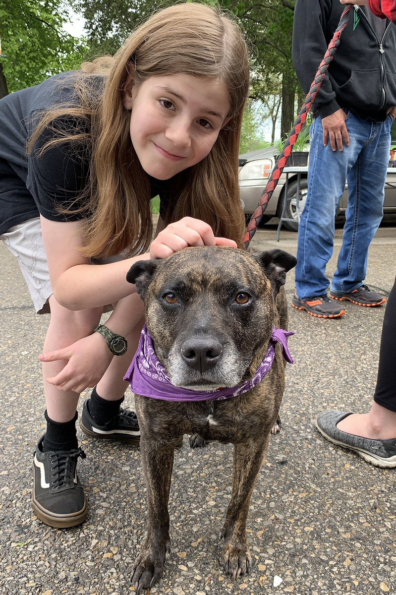 I pet Tessa. She is a 10 year old Pitbull from Guam. Her 1st caregiver was stationed in Guam and brought her to the US. He couldn't keep a Pitbull in military housing, so he sent her to his parents in IA. Now she lives with his sister. Tessa is a happy dog who loves to play ball. <br>http://pic.twitter.com/rDMaHfz2Rm