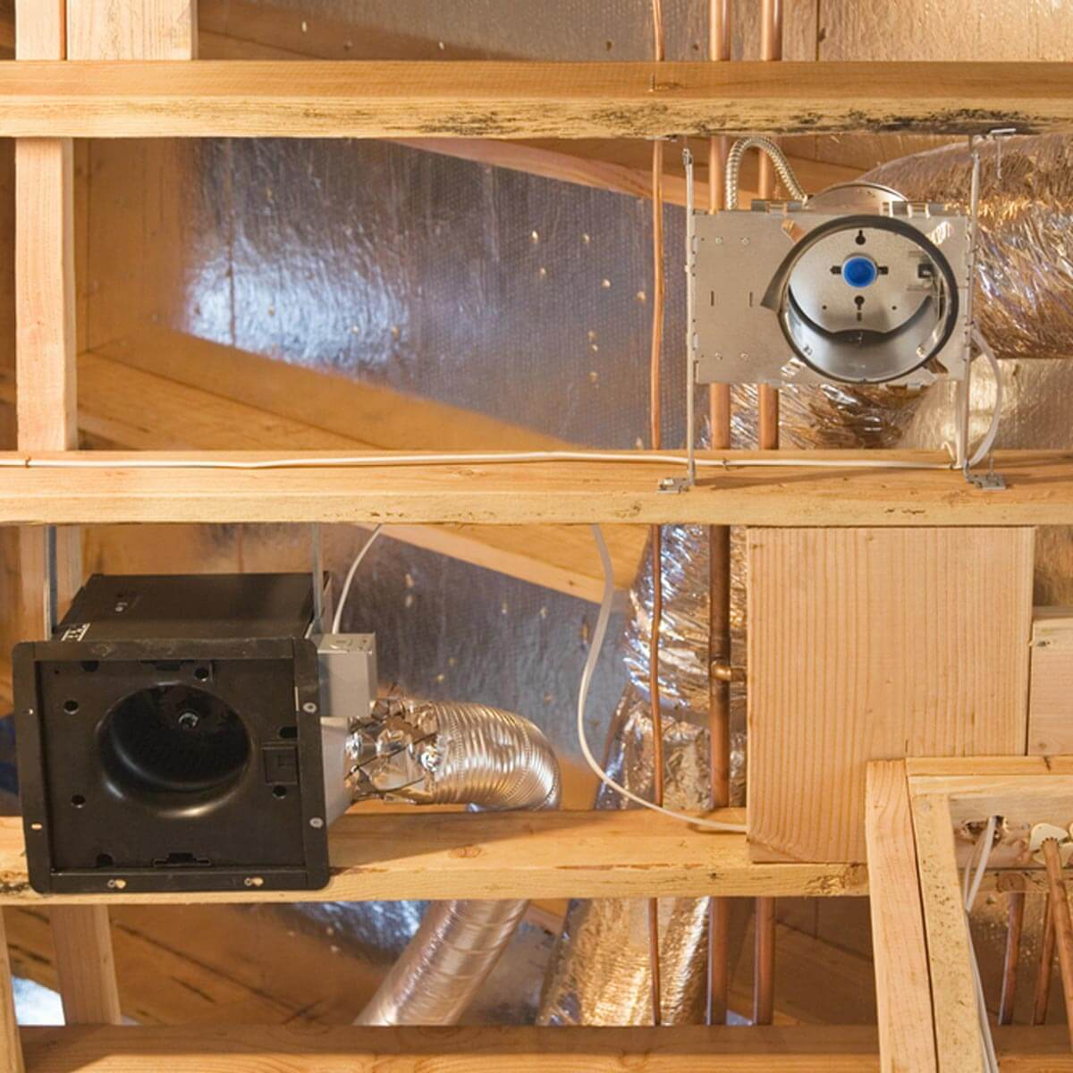 Proper ventilation can go a long way in preventing a termite infestation. #homehacks #DIY  http://cpix.me/a/72368409