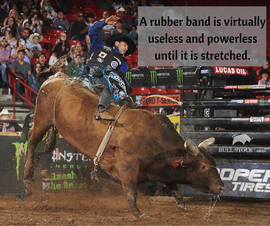 Bull Stock Media's photo on #MotivationMonday