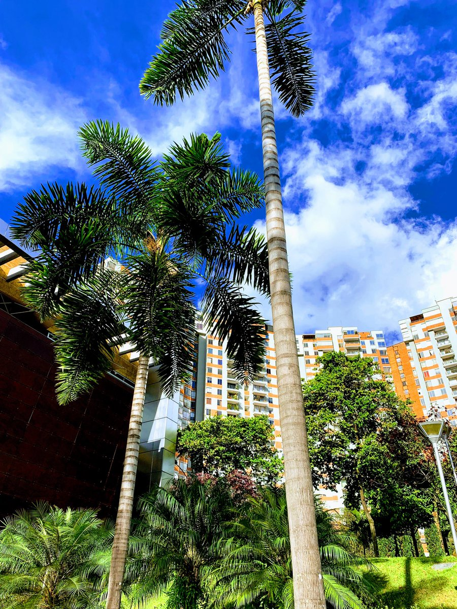 Your new favorite city you've never been to is #Medellin Colombia.  Tremendous place for multiple reasons.