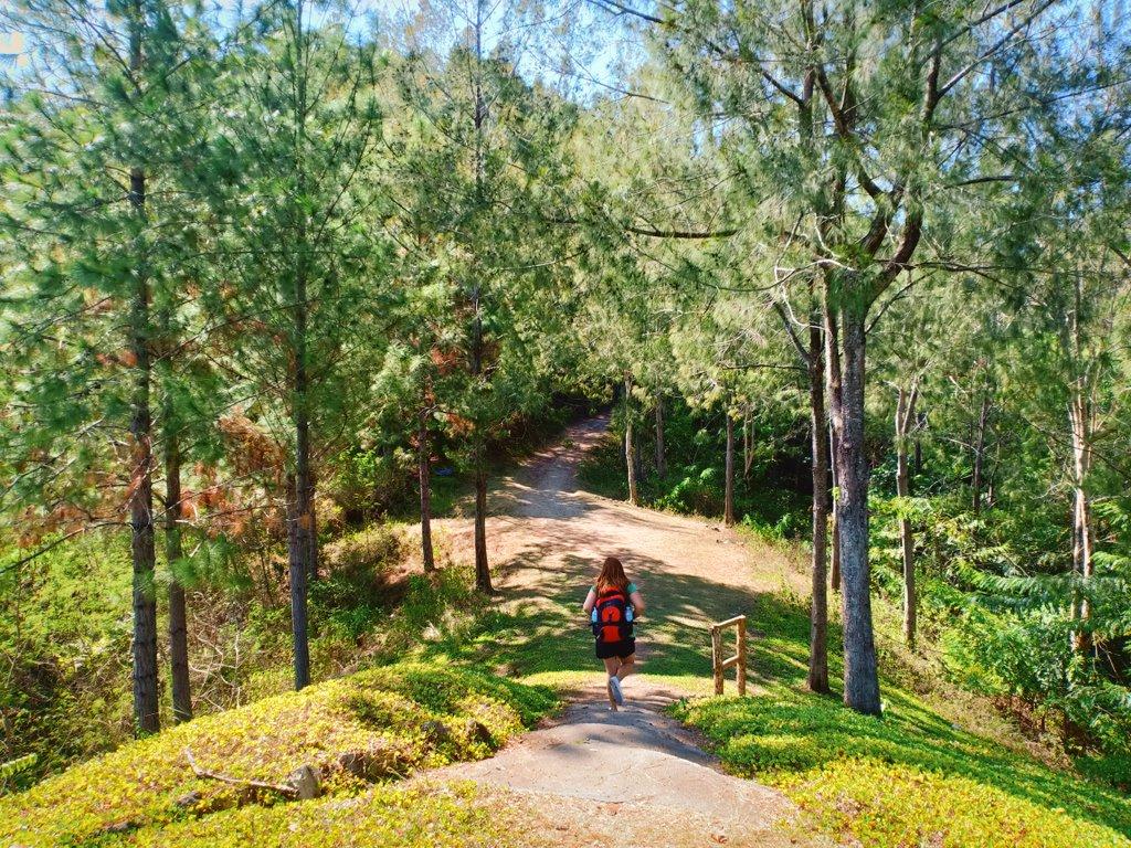 Walked 8kms from Malasag Highway to Mapawa Nature Park.  #holyweek #tbt #photography #photo #photooftheday #amazing #nature #naturelover #ph #photograph