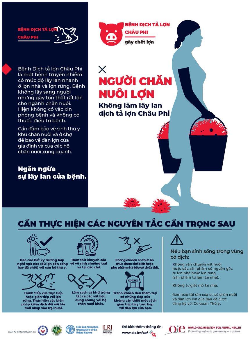 Nhung le dating vietnam Dating-Seiten auckland new zealand
