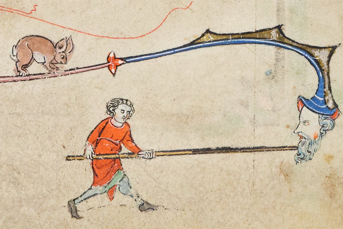 You know that kind of day when everyone is at odds, there is bad temper and naked aggression, and the rabbit seems to be turning into a piglet, with ears to match....well thankfully this is NOT that day! B.11.22, f.165r, Trinity College Cambridge. @WSheepdog @Salcathguide 1/2