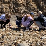 Fossil hunting on the beach