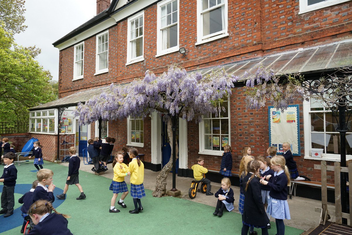 The Wisteria at Hall House is looking splendid today. What a super place to play! #HallHouse https://t.co/trhC1BPUtI