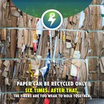 Image for the Tweet beginning: If we recycled all newspapers,