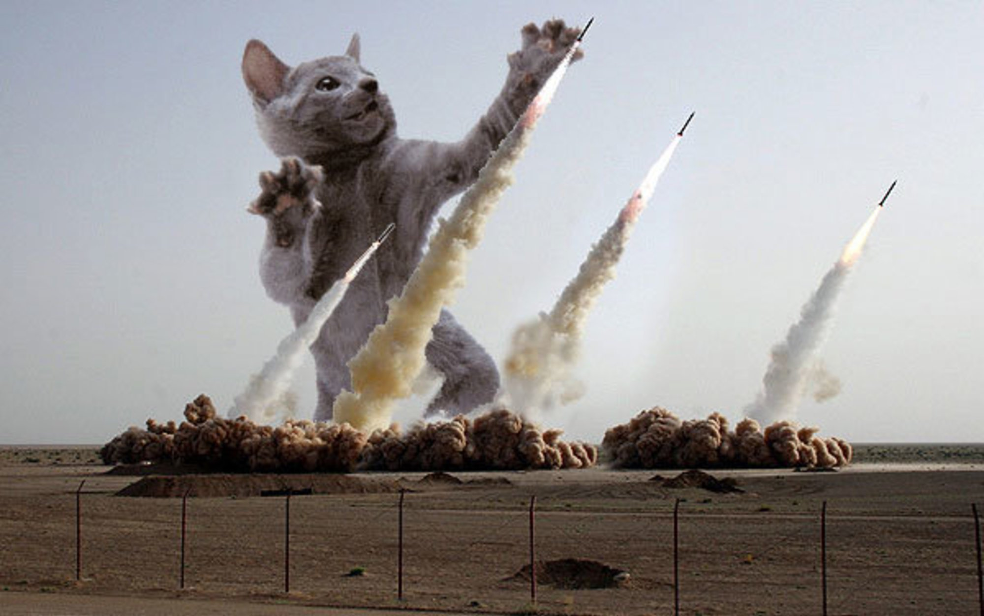 Ракета смешные картинки, надписью красавчик