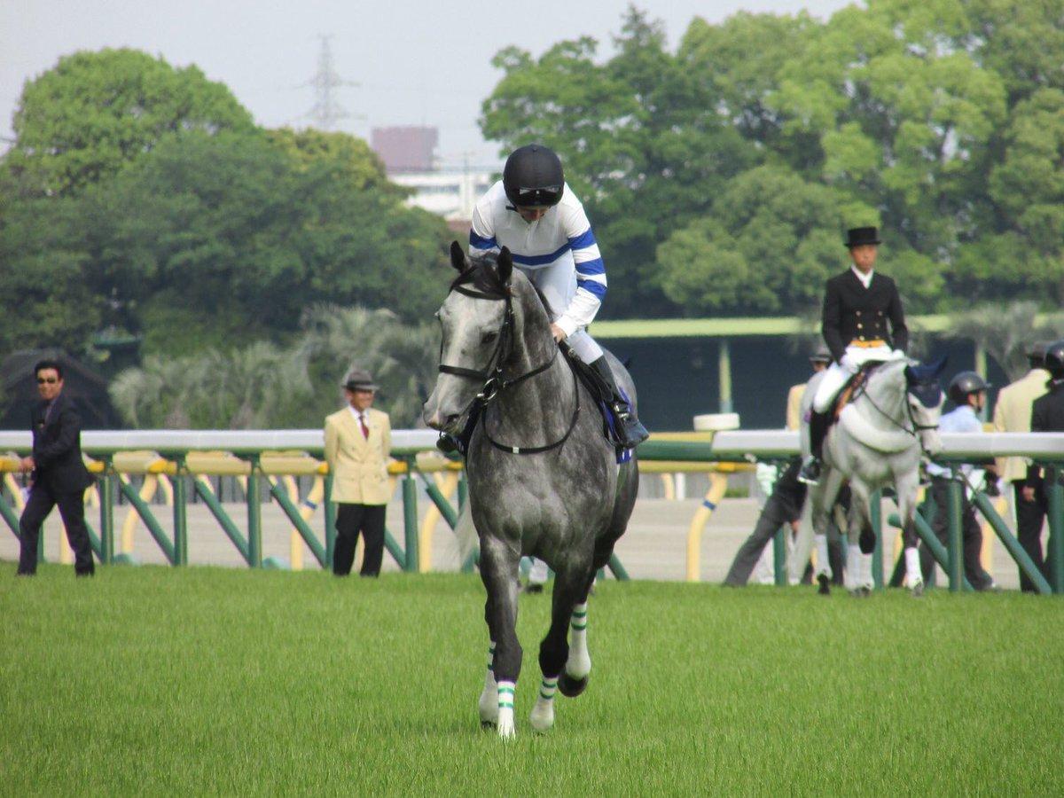 '19/05/12 東京競馬場 ヴィクトリアマイル ノームコア号 #ノームコア #Normcore #Dレーン #DamianLane #ヴィクトリアマイル