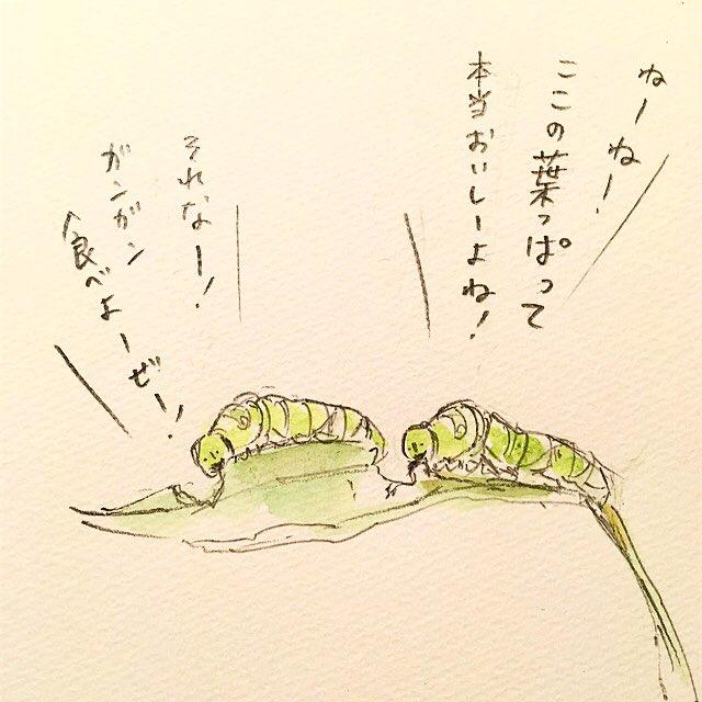 幼虫のミス。
