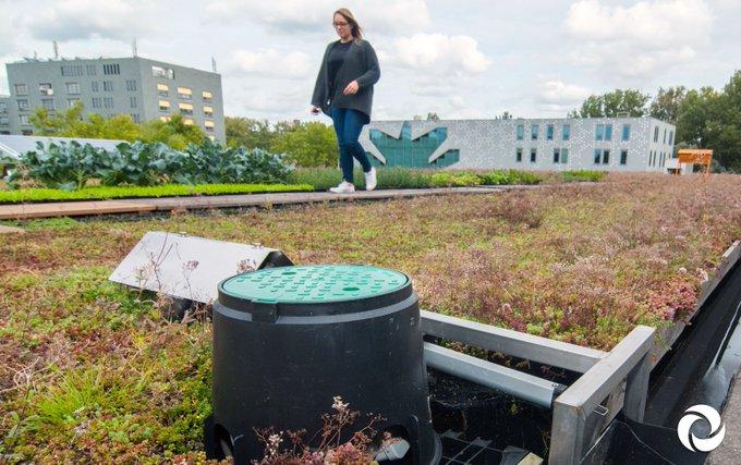 Kom mee, het dak op! 🏠 Amsterdam legt met het vernieuwende dakenproject RESILIO de komende jaren 10.000m2 aan slimme blauw-groene daken aan. 🍀💦  Op 18 juni, tijdens @wemakethecity - Climate Proofing the Region, kun jij mee het dak op!  ℹ Tickets via: https://t.co/Kk7sx4N2fF
