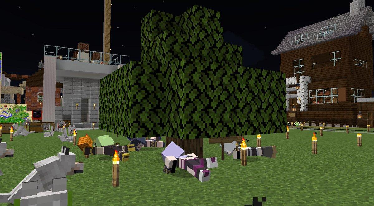 エリちゃんの植えた木、速攻そだってみんながうつぶせになっちゃったよ!!!!w 新しい世界に行っても育って羽ばたいてね!!!エリちゃん絶対大丈夫だよ!本当に本当に大好きだよエリちゃん! #エリにかまって