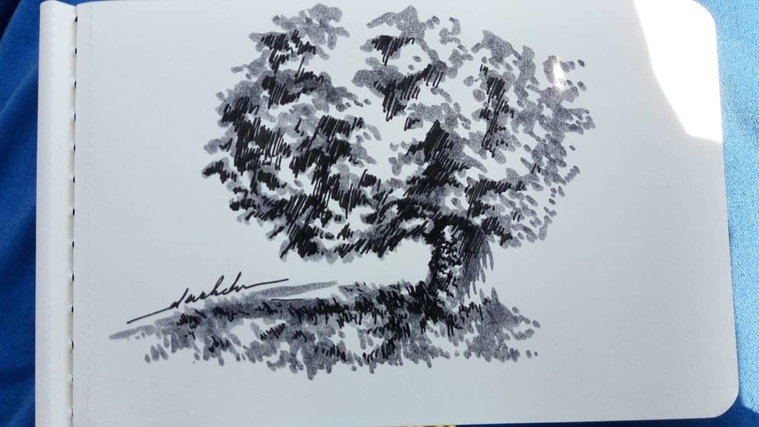 Trying my new brush pens #dailyart #dailyillustration #trees #nature #blackandwhitedrawing #brushpens https://t.co/p08HAHQbbw