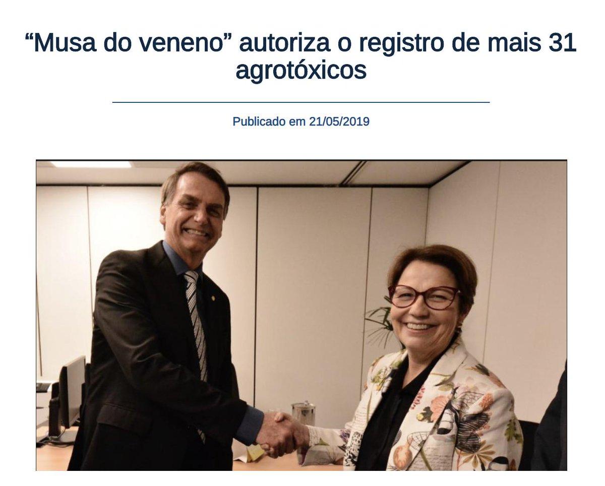 """Essa mulher nojenta é conhecida como """"Musa do Veneno"""", a Ministra da Agricultura do Bolsonaro faz TUDO pela Bancada Ruralista, cedendo a todos os interesses econômicos, mesmo q signifique envenenar os animais e o povo.Tudo com aval do Presidente.É isso q vc defende?"""