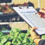 Erhöhte Transparenz ist nur eine Möglichkeit, mit der die # Lebensmittelindustrie die # Qualitätskontrolle verbessern kann, aber es gibt noch einen weiten Weg. Lesen Sie weiter, um zu erfahren, wie die Branche Verbesserungen erzielen kann. https://t.co/5dtkZjz1CH