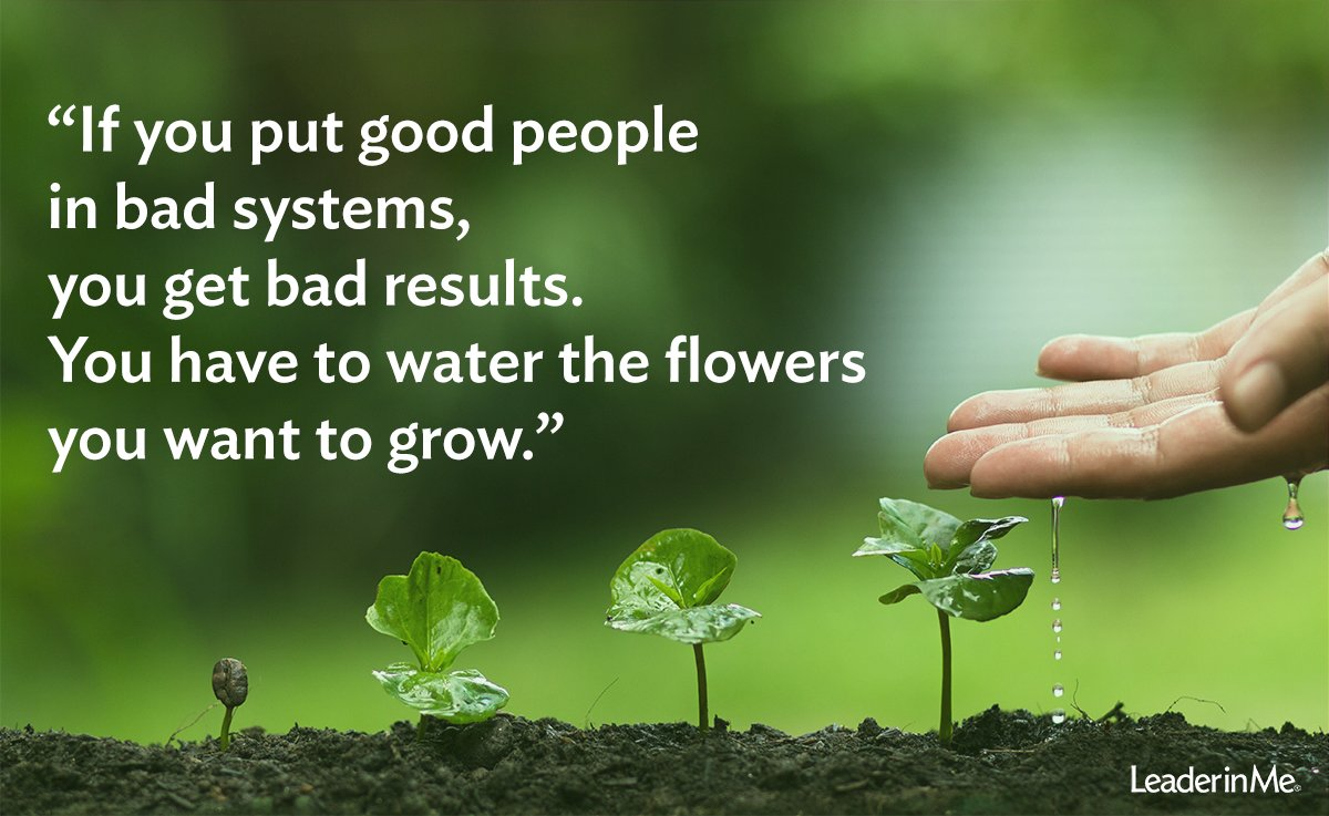 What kind of results are you getting at your school? #Grow #Flowers #LiM