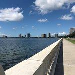 Image for the Tweet beginning: Bayshore in #Tampa