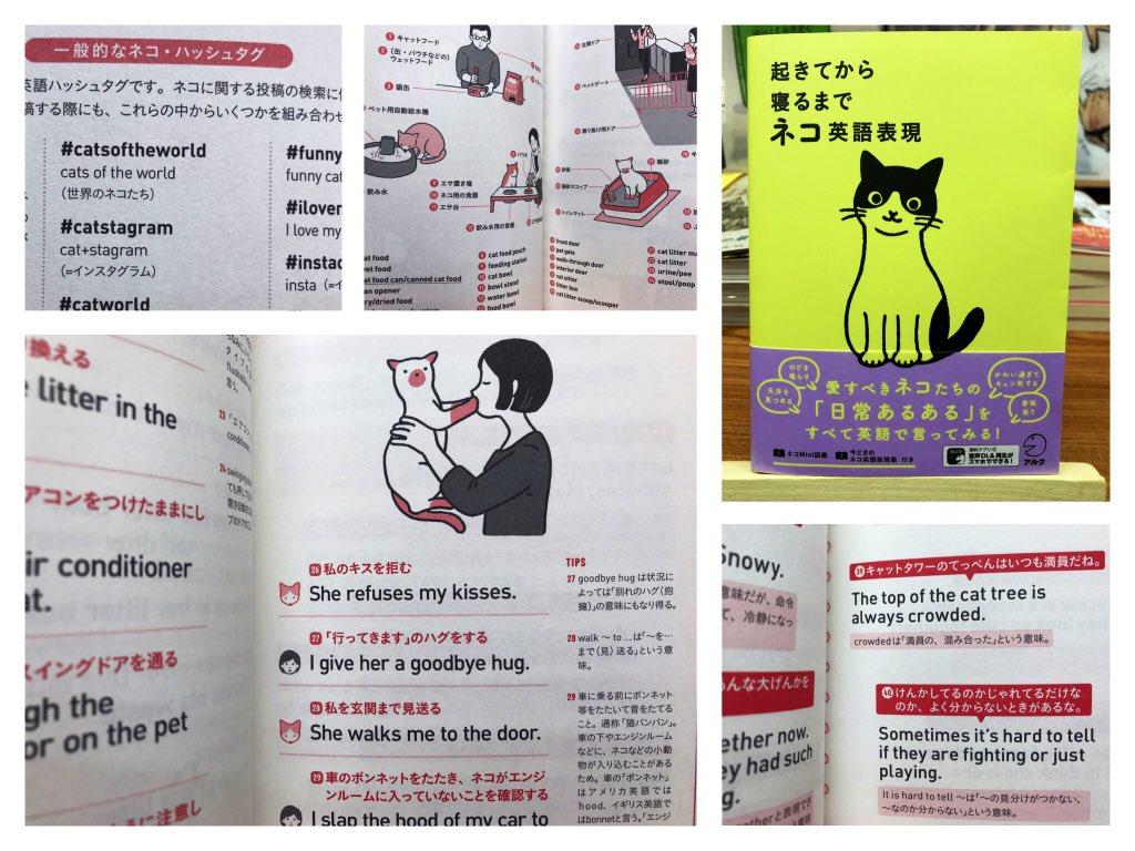 """200万人が実践したつぶやき学習法""""猫版""""が登場!音声DL付き『#ネコ英語表現』猫にまつわる英単語から会話までギュギュッと1冊に♪ SNSで発信する際に役立つ猫関係のハッシュタグ単語も収録!会話文も飼い主目線で「あるある」と思わずニンマリ♡#にゃんこ堂 #猫本 #アクル #英会話 #猫英語"""