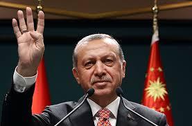 #Turkey Photo