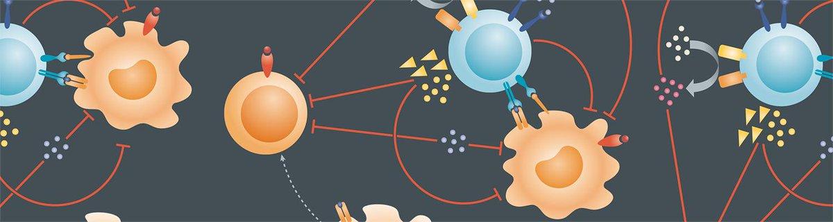 book новые образовательные технологии в вузе сборник материалов седьмой международной научно