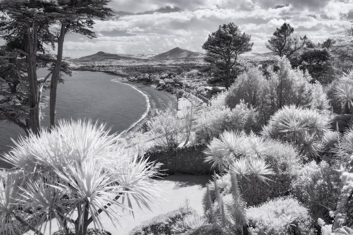 RT @RobKellyPhoto: #Killiney Bay #garden #Wicklow mountains #infrared #monochrome #photography #Ireland https://t.co/KTRPfKE4G6