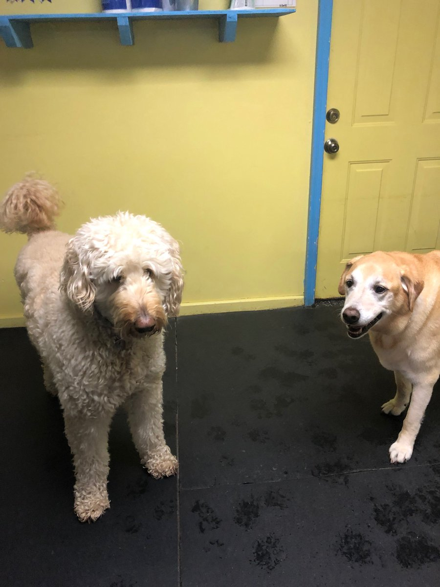 Molly and Remington pose for a picture.