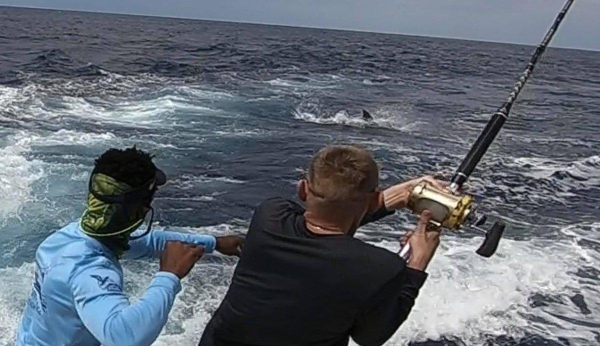 Cape Verdes - My Victoria went 2-2 on Blue Marlin (600).