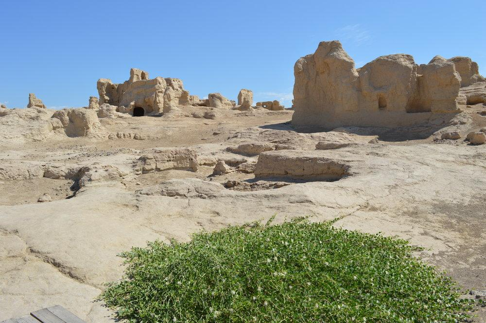 test Twitter Media - The Central Asian Archaeological Landscapes project @uclcaal at @UCLarchaeology works to create a digital database of fragile archaeological sites across the region. Discover how this helps to protect endangered heritage – on the project's new website https://t.co/Xj0HTINxQp https://t.co/363dPsE9yW