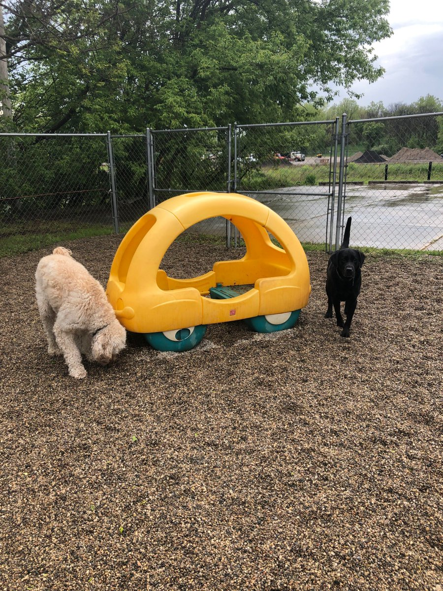 Remington and Gus investigate the play-yard.