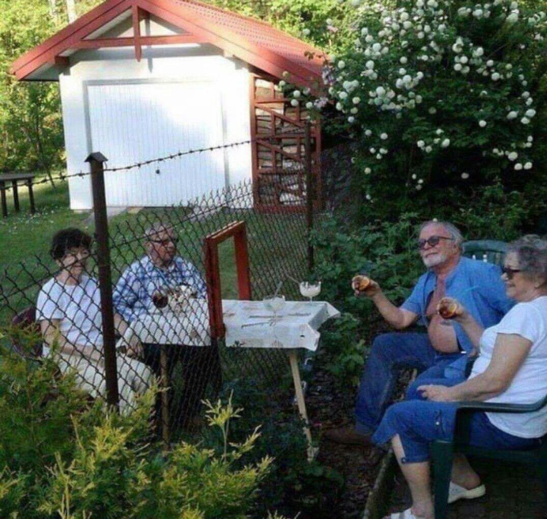 Картинки красивые, картинки соседи по даче