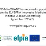 Image for the Tweet beginning: Our #PDMitoQUANT partner @icm_institute's May
