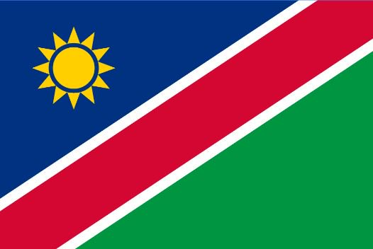 Strong partnerships are needed to #EndWildlifeCrime using strategic interventions, available technologies, innovative action, fast&amp;flexible funding as well as ongoing adaptation to changing threats. @NamibianEmbassy for event today-we can all learn from Namibia's experience!<br>http://pic.twitter.com/rsBuVKxKnP