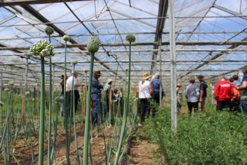test Twitter Media - Looking for a Biodynamic Bank Holiday weekend? Live near Peterborough in the East of England? The Seed Co-operative @seedcoop near Spalding is having an open day this Saturday 25th at their Gosberton Bank Nursery. Don't miss it, book your free place today: https://t.co/WoNYp61kbz https://t.co/2N6P0w5sIt