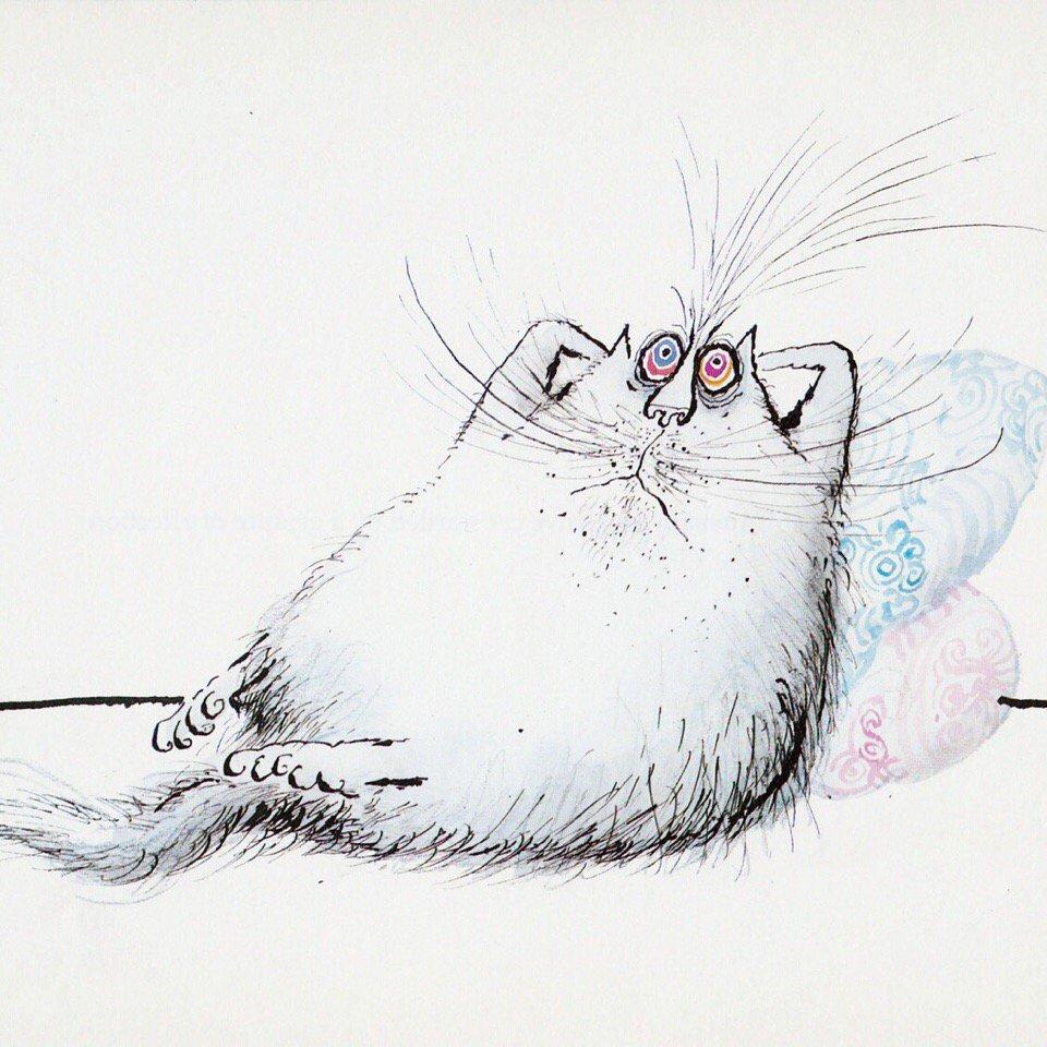 Прикольные картинки, прикольные коты рисунки карандашом