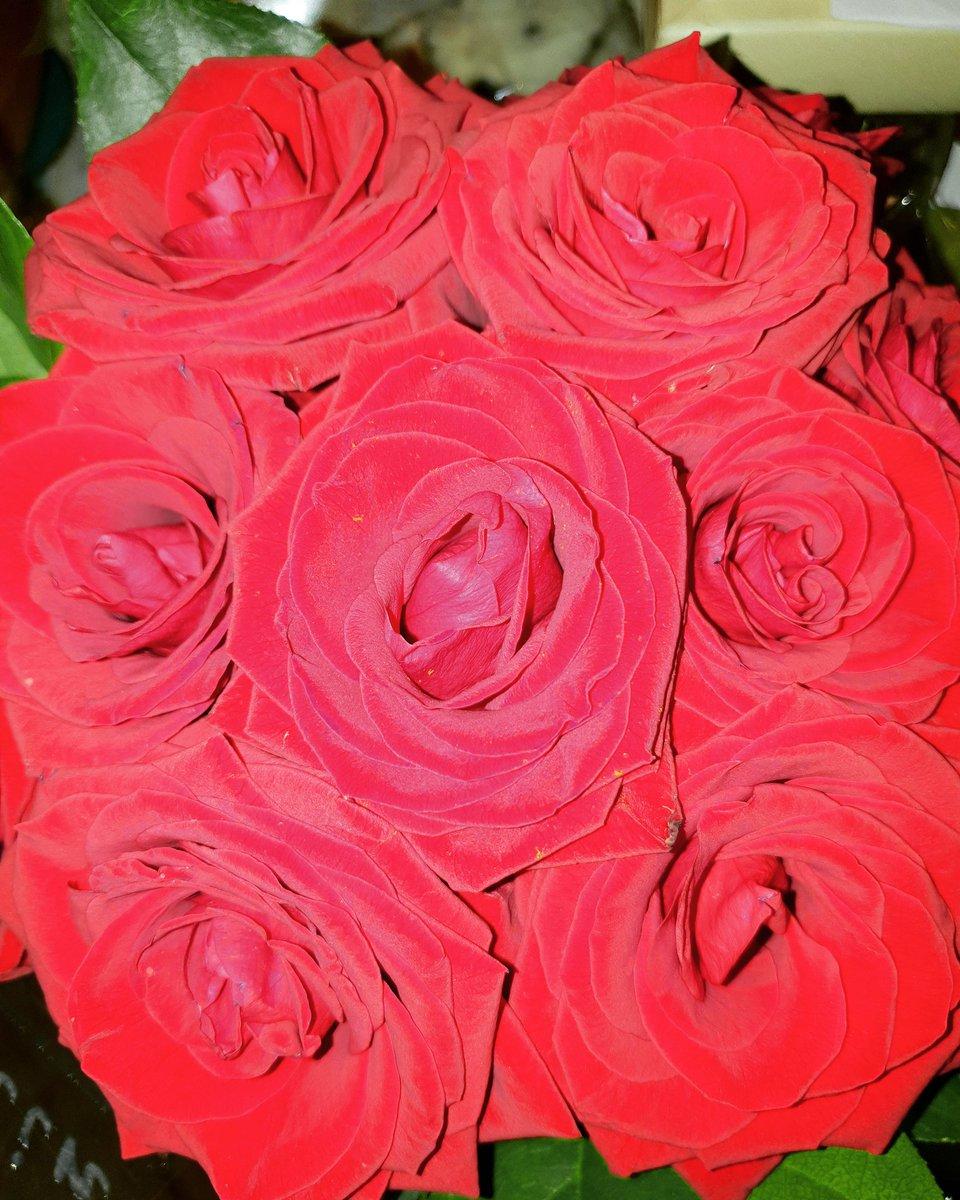 Le tue rosse rosse #JanMichael la forza della famiglia oltre le distanze tu ci sei sempre grande Uomo #cugino #family #marinamilitare #veroamore #myfollowers #UnBacioFatato 🥰💐🌹💓💓❤