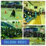 Image for the Tweet beginning: Falcon 500 #teamspirit #FalconPride @PerryTwpSchools